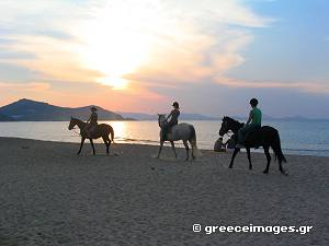 Horse riding in Naxos Greece