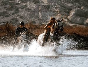 Horse riding in Naxos Island Greece